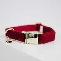 Halsband Kentucky corduroy red