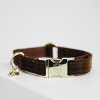 Halsband kentucky corduroy brown